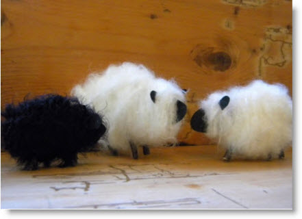 fuzzy yarn sheep